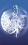 Розыгрыш призов от Страны Красоты на Фестивале Окские сезоны - 2012!